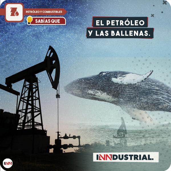 El petróleo y las ballenas