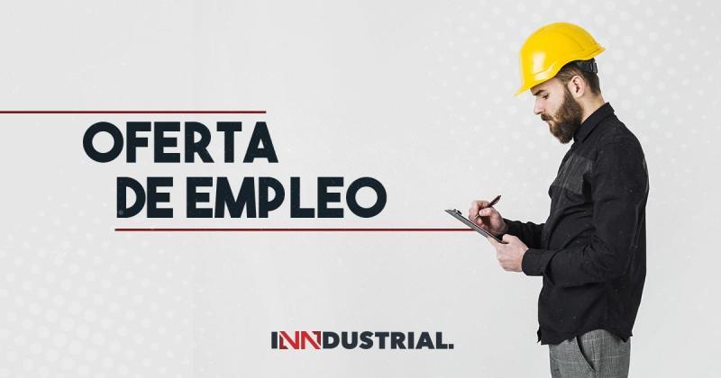Profesional en ingeniera industrial o afines
